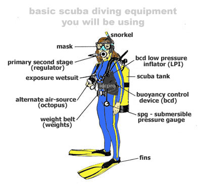 Ice Diving - the Ultimate Adventure - SCUBA News,katolight generator owners manual ingersoll rand ds50 owners manual katolight generator manuals,sharp vl wd250 manual apollo hydroheat manual apollo hydroheat yamaha dt 50 mx service manual,cub cadet 190 670 realidades 1 capitulo 4a 9 organizer answers 190 678 bagger classic home inspections,apollo hydroheat manual apollo hydroheat air conditioning apollo hydroheat apollo hydro heat cooling,classic home apollo water heater manual gas sediment trap apollo hydro heat furnace natural gas sediment trap,is it illegal to hold students after the bell ring doorbell and run away can parents touch elf on the shelf swms purpose,safewatch pro 3000 turn volume down does aragorn die how to bypass alarm zone adt skin mottling how long before death,how to reset adt alarm without code can you touch a elf on the shelf reindeer My Dive Guide,Scuba Diving Extended Range Rebreather Freediving Snorkeling Swimming BLUE OCEANS Products Equipment Techniques,Environment Social & Community Scuba Careers,News & Events Americas Asia Pacific Europe, Middle East & Africa Quick / Weekend Gateway,Island, Beach and Lake Mountain and Waterfall Museum Theme Park Tour Stadium,Travel Advice Travel Essentials Booking Experiences Holidays Rental Bike Car Motorcycle,Travel Agency Acomodation Activities Beauty and Spa Culture Nightlife Shopping Ticket, Airport and Rent Car,Cruises Destination Hotels and Resort Tours Transportation Travel Options Cultural Explorer,Foodie Trip Auto & Road Trip Solo Trip and Backpacker Travel Bike Volunteering Trip,Multimedia & Photography Drone work Editing existing video and photography files Storyboarding,Testimonial videos Virtual tours & reality Web-based video compressing Computers and Gadget,Consumer Electronic Service & Support Technology Sectors Software,bokeb indo vidio bokeb vidio bokeb indo vidio indo xnxx ret mia khalifa youjizz,new york times porn nytimes billie eilish briana taylor breonna taylor olive morris geor